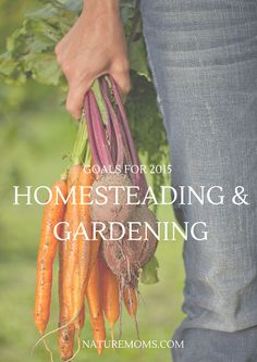 Gardening and Homesteading Goals for 2015