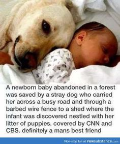 This just proves that animals are more humane than some humans.