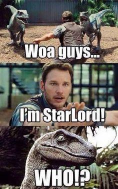 "Chris Pratt vs the Velociraptors: ""I'm Star-lord?"" ""Who?"" (Guardians of the Galaxy meet Jurassic World) Funny Marvel Memes, Avengers Memes, Funny Memes, Hilarious, Marvel Dc Comics, Marvel Avengers, Marvel Heroes, Jurrassic Park, Gaurdians Of The Galaxy"