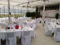 Hochzeit im Haus der Rosen in Fellbach