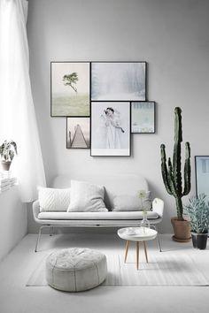 Richt je huis in met cactussen