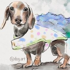 This is Gretel the Doxie from @adventurejess - one of the original adventure dogs! Want your dog drawn and featured? Follow us and hashtag #DrawMyCanine!