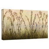 Found it at Wayfair - 'Wildflowers Amber' by Cora Niele Gallery Wrapped on Canvas