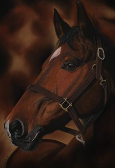 "Original pastel painting of a beautiful dark bay horse! ""Chocolat"" would be the perfect companion for any horse lover! Bay Horse, Thing 1, Horse Portrait, Surrealism Painting, Majestic Animals, Pastel Drawing, Horse Art, Beautiful Horses, Fine Art Prints"