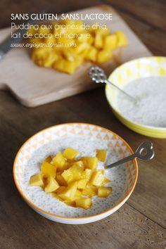 L'essayer c'est l'adopter ! Ce pudding de graines de chia aux saveurs exotiques (lait de coco et mangue) est délicieux.