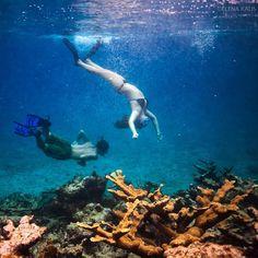 Snorkeling fun - @elenakalis- #webstagram