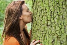 ¿Y si lleváramos al extremo la pasión por el mundo natural o más concretamente por los árboles? La dendrofilia identifica a aquellas personas que se sienten atraídas sexualmente hacia los árboles y las plantas, pudiendo utilizarlas como si de objetos sexuales se tratara.</p>