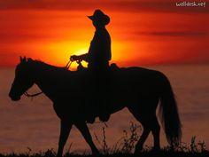 cowboys   Cowboy sur son cheval au coucher de soleil