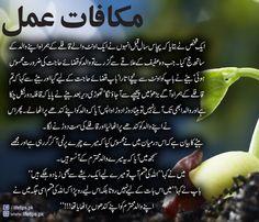 Imam Ali Quotes, Muslim Quotes, Urdu Quotes, Islamic Quotes, Quotations, Life Quotes, Qoutes, Deep Words, True Words
