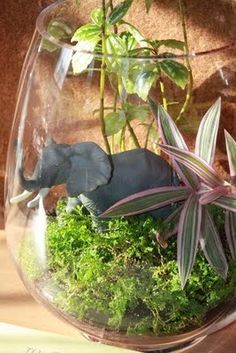 Fun terrarium wedding centerpiece - except make the elephant a dinosaur