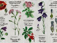 Carta da parati con motivi floreali con scritte PIANTHUS by Wall