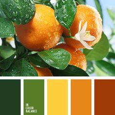 Цветовая палитра №3372