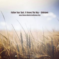 - Follow your soul it knows the way - To follow your soul you need to know your soul. How do you know you are following your soul and not your emotions or your imagination. Many people struggle with this.  It's a real conflict that most people who genuinely want to follow their purpose experience. You can only follow your soul when you have clarity.....  Shamala  Contact me for a free strategic Skype coaching call to see how we can work together to clarify your life purpose…
