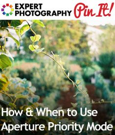 """""""How  When to Use Aperture Priority Mode  Situation 1 – Good light / Sunny day  Situation 2 – Portraits  Situation 3 – Landscapes (To see back/mid/foreground in focus, you need a wider aperture, somewhere up to about f/16 )  ....  don't use it for poor light/dark rooms or night landscapes"""""""
