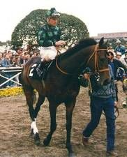 Prized(1986)(Colt)Kris S- My Turbulent Miss By My Dad George. 5x5 To Bull Dog. 17 Starts 9 Wins 2 Seconds 3 Thirds. $2,262,555. Won BC Turf(G1), Molson Export Million(Can-1), Swaps S(G2), Frank E Kilroe Mile H(T), San Luis Rey H(T). Died In 2014.