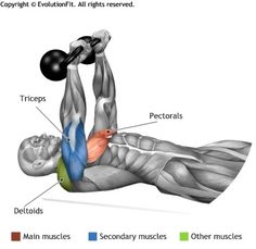 CHEST -  FLOOR PRESS 2 KETTLEBELL