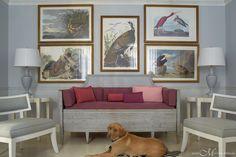 wildlife prints  - simple  PortfolioPortfolio @ Janie Molster DesignsJanie Molster Designs