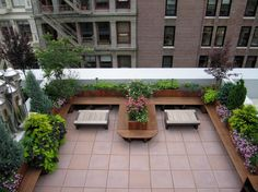 Staggering Rooftop Terrace Design Ideas in Patio Contemporary design ideas with backyard container plants deck garden bench Landscape