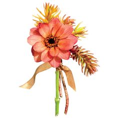 """Boutonnieres. """"For this one, I went for something monochrome. Orange is lovely, especially for fall. And stone-crop succulents have interesting texture—they're like furry caterpillars. Plus, they are long-lasting."""" Boutonniere of zinnia and stone-crop succulent."""