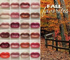 "Emily | Distributor #415122 (@mysouthernbellestyle) on Instagram: ""Happy Fall Y'all! What color will you FALL in love with this season? See what I did there!…"""