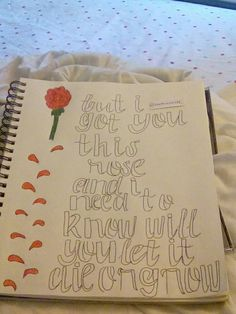 My Shawn Mendes Lyric Drawing // Roses Twitter: @likethiscaniff
