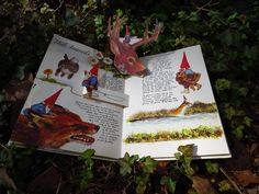 Gnomes pop-up book