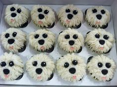 Maltese cupcakes by Designer Cakes By April, via Flickr