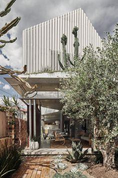 La maison utilise des matériaux bruts et des espaces sculptés pour s'intégrer au mieux sur le terrain étroit et long qui jouxte une rue commerçante, tout en orchestrant les interactions sociales entre les zones publiques et privées. Le rez-de-chaussée de la maison a été conçu spatialement et matériellement comme un jardin continu entre les murs d'enceinte du site. Le niveau supérieur, contenant trois chambres, est conçu comme une masse solide qui creuse des vides pour la lumière, créant… Sydney Gardens, How To Clean Brick, Recycled Brick, Boundary Walls, Timber Windows, Steel Columns, Two Storey House, Brick And Mortar, Landscaping Company