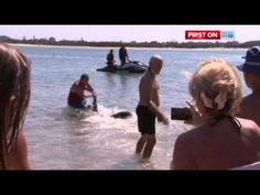A British man wrestled a shark away from the shallow waters of an Australian beach.  Bystanders were also surprised to see the shark in a nearby creek. (Jan. 21)