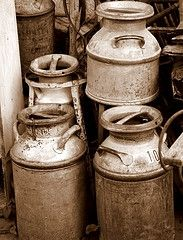 Antique Milk cans  A big dairy truck would stop &  empty these into a tank & then go to the plant to process it.