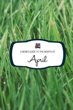 April Fun in Colin County: A Family-Friendly Guide http://collincounty.citymomsblog.com/events/collin-county-moms-guide-month-april/?utm_campaign=coschedule&utm_source=pinterest&utm_medium=Collin%20County%20Moms%20Blog&utm_content=A%20Collin%20County%20Mom%27s%20Guide%20to%20the%20Month%20of%20April #April #Families #CollinCounty #CollinCountyMoms
