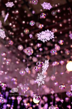 Snowflakes- if it was a winter.. and the purple is the color scheme @Kristen