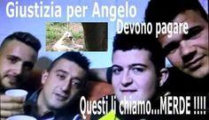ASSOCIAZIONE ITALIANA DIFESA ANIMALI ED AMBIENTE: CANE ANGELO. PAGHIAMO NOI IL LORO PSICOLOGO