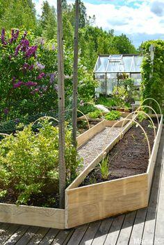 DSC_2830 Fruit Garden, Herb Garden, Vegetable Garden, Home And Garden, Garden Landscape Design, Garden Landscaping, Gardening For Beginners, Gardening Tips, Garden Makeover