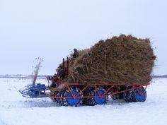 Harvester, Monster Trucks, Vehicles, Car, Vehicle, Tools