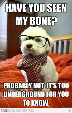 hipster..