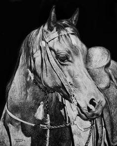 """For Sale: Strength - Horse Scratchboard by Melissa Helene    $250   8""""w x 10""""h   Original Art   http://www.vangoart.co/buy/art/strength-horse-scratchboard @VangoArt"""
