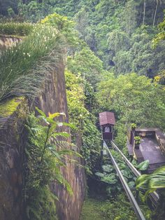 Hotel Chic Virtual Vacation to Balis Ubud Hanging Gardens