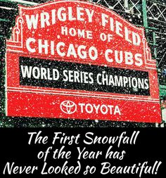 """The First Snowfall in Wrigleyville since Winning the World Series. Baseball Signs, Cubs Baseball, Baseball Field, Mlb Teams, Sports Teams, Cubs Wallpaper, Cub Sport, Chicago Cubs World Series, Cubs Win"