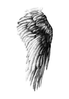 Angel Wings Posters And Prints Horse Wall Art Canvas Painting Wall Pictures For . - Angel Wings Posters And Prints Horse Wall Art Canvas Painting Wall Pictures For Living Room Nordic - Angel Wings Wall Art, Angel Art, Angel Wings Painting, Angel Paintings, Angel Wings Drawing, La Santa Muerte Tattoo, Panzer Tattoo, Matte Painting, Painting Walls