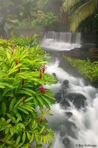 Tabacon Hotsprings Resort - Costa Rica. Where else can you sit under a waterfall that is 105 degrees & get a hydraulic, volcano- heated water massage? The Spa there is one of the best in the world too.