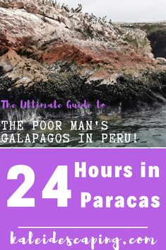Get practical travel tips, guides, and inspiration to help you plan your visit to Paracas, one of the best places to appreciate nature in Peru! Red Beach, Island Tour, Sandy Beaches, Plan Your Trip, Nice View, Travel Inspiration, The Good Place, Islands, Travel Tips