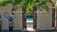 Ranch of the Angels 11651 Graton Road Sebastopol, Ca.