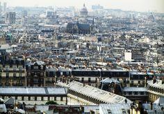 Parisian rooftops seen from Montmartre