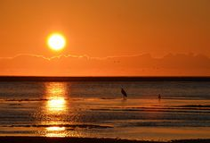 Oregon Sunset by rlsycle, via Flickr