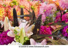 flores frescas, y, lillies Ver Imagen agrandada