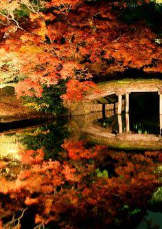 Bridge in the reflection, Riku Gien, Japan