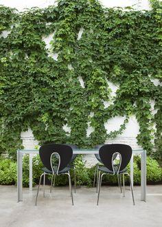 Patio in Cosin Studio in Valencia, with STUA's Deneb table and Globus chairs for outdoor, both designs by Jesus Gasca.STUA Design Etc