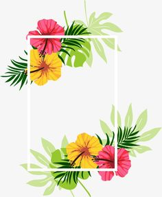 Beautifully decorated beautiful floral frame, Fine, Beautiful, Decoration PNG and Vector Hawaiian Theme, Hawaiian Flowers, Island Theme, Tropical Bridal Showers, Love Backgrounds, Story Instagram, Cool Animations, Floral Border, Flower Frame