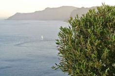 Anastasia, Santorini Greece, Mountains, Beach, Water, Blog, Travel, Outdoor, Gripe Water